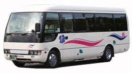 Микроавтобус 18-21 мест