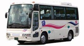 Малый автобус 19-25 мест