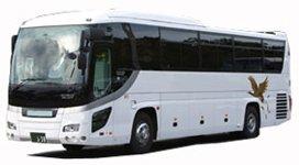 Большой автобус 45-60 мест