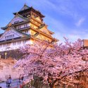 Автобусная экскурсия по Осака. English