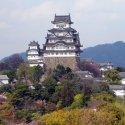Тур на сакуру в Японию 2020 /Максимум