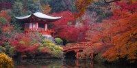 Киото из Токио
