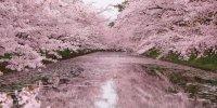 Префектура Аомори