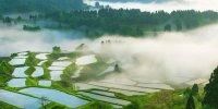 Префектура Ниигата