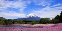 Префектура Яманаси
