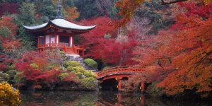 Киото