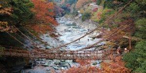 Префектура Токусима