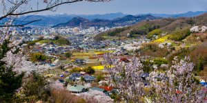 Префектура Фукусима