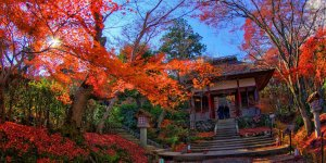 Храм Дзёдзякко-дзи