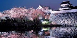 Руины замка Фукуока