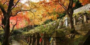 Буддийский храм Тёкэидзи