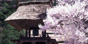 Храм Мёдзендзи