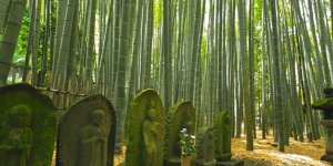 Храм Хококу-дзи