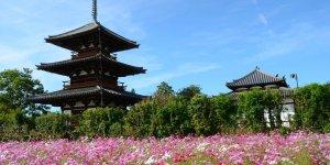 Храм Хокки-дзи