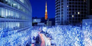 Новый год в Токио. Эконом.