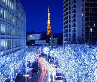 Новый год в Токио. Эконом. Групповой тур.
