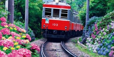 Горная железная дорога Хаконе Тозан