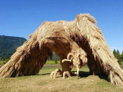 Фестиваль соломенных скульптур Wara Art Festival