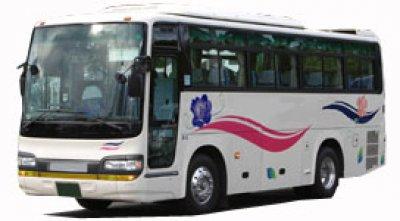 Средний автобус 27-28 мест