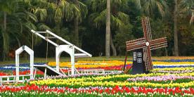 Цветочный парк Кагосимы