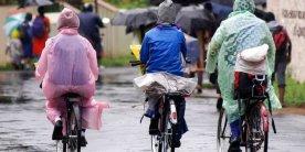 Сезон сливовых дождей