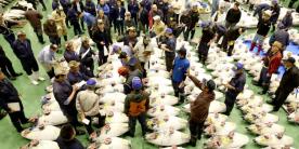 Рыбный рынок Тоёсу: покупатели проверяют качество продуктов аукциона