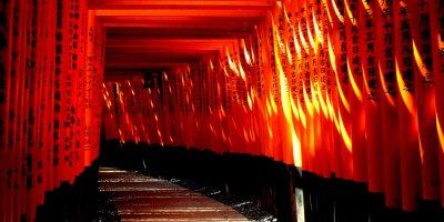 """Экскурсия """"Фусими: святилище тысячи ворот и дегустация сакэ"""" English"""
