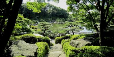 Японский сад в парке Оохори