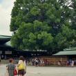 Токио. Святилище Мейдзи-дзингу