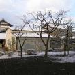 Цукуба. Район частных хозяйств крестьян