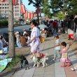 Цукуба. Летний городской фестиваль Цукуба Мацури