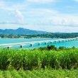 Обзорная экскурсия по о.Окинава English
