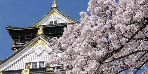 Экскурсия в Нару и Осаку