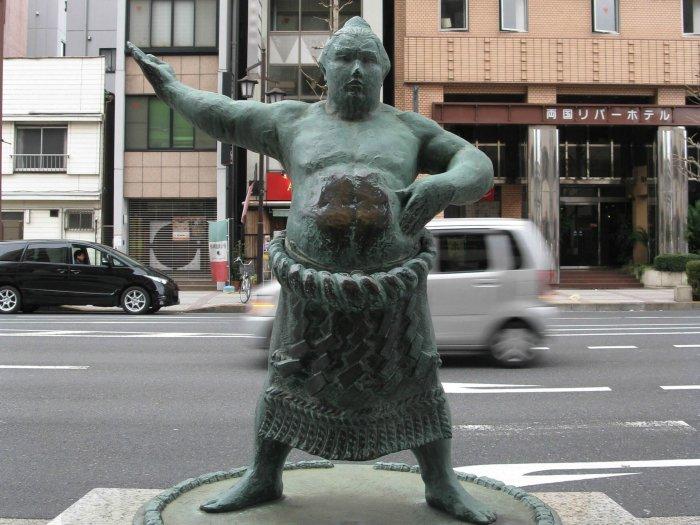 Район Рёгоку