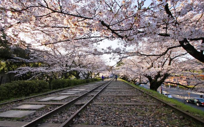 Старые пути Кэагэ