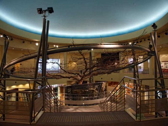 «Музей груш сорта XX век»