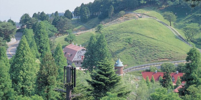 Смотровая площадка на горе Рокко