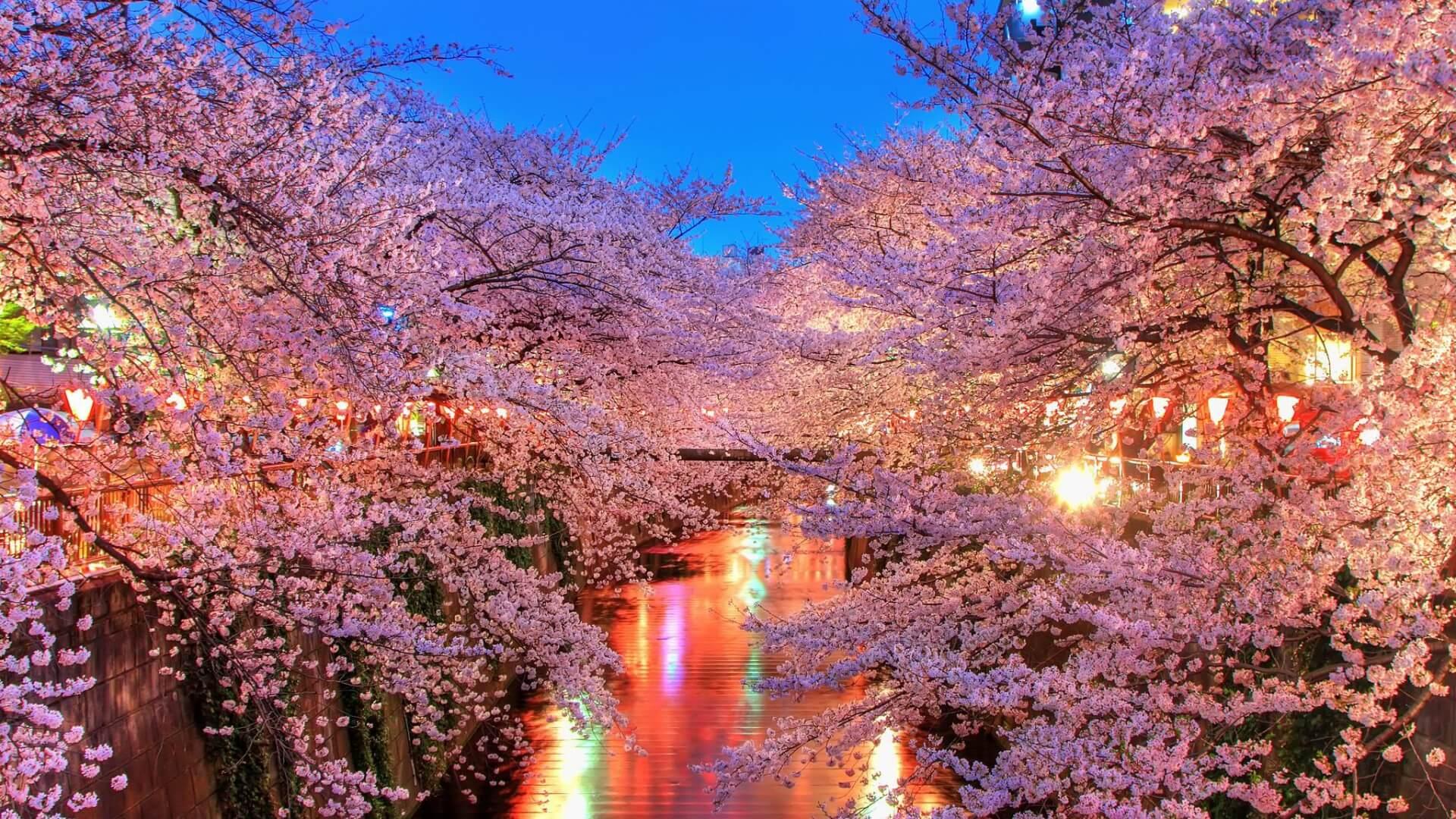 japan macro environment